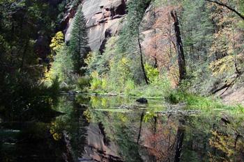 West Fork Trail Hiking Sedona Az
